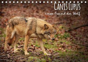 Canis Lupus – unser Freund der Wolf (Tischkalender 2019 DIN A5 quer) von Hollstein,  Alexandra