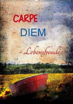 Carpe diem- Lebensfreude (Wandkalender 2019 DIN A2 hoch)