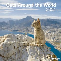Cats Around the World 2021 – Wand-Kalender – Broschüren-Kalender – 30×30 – 30×60 geöffnet – Katzen-Kalender