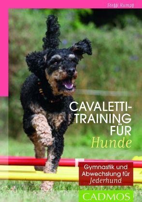 Cavalettitraining für Hunde von Rumpf,  Steffi