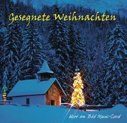 CD-Card Gesegnete Weihnachten von Trebing,  F Christian
