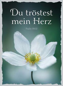 CD-Geschenk-Card Du tröstest mein Herz von Adams-Frey,  Andrea, Eichholz,  Thea, Plett,  Danny