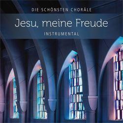 CD Jesu, meine Freude von Rieger,  Jochen