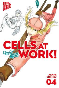 Cells at Work! 4 von Höfler,  Burkhard, Shimizu,  Akane