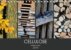 Cellulose, Cellulose in Urform (Tischkalender 2019 DIN A5 quer) von Fotokullt