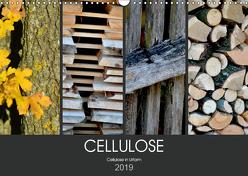 Cellulose, Cellulose in Urform (Wandkalender 2019 DIN A3 quer) von Fotokullt
