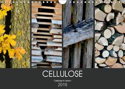 Cellulose, Cellulose in Urform (Wandkalender 2019 DIN A4 quer) von Fotokullt