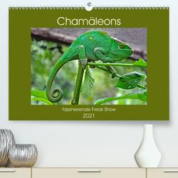Chamäleons – faszinierende Freak Show (Premium, hochwertiger DIN A2 Wandkalender 2021, Kunstdruck in Hochglanz) von Edel,  Anja