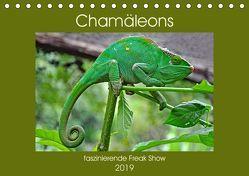 Chamäleons – faszinierende Freak Show (Tischkalender 2019 DIN A5 quer) von Edel,  Anja