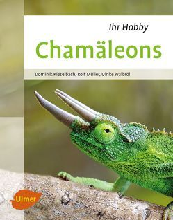 Chamäleons von Kieselbach,  Dominik, Müller,  Rolf, Walbröl,  Ulrike