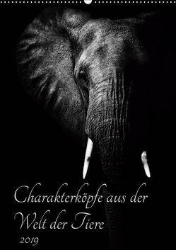 Charakterköpfe aus der Welt der Tiere (Wandkalender 2019 DIN A2 hoch) von und Holger Karius,  Kirsten