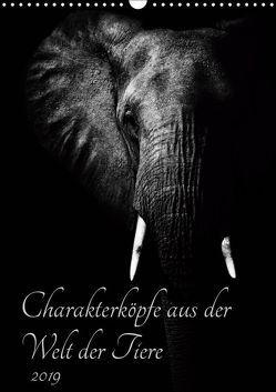 Charakterköpfe aus der Welt der Tiere (Wandkalender 2019 DIN A3 hoch) von und Holger Karius,  Kirsten