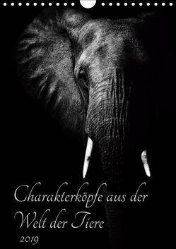 Charakterköpfe aus der Welt der Tiere (Wandkalender 2019 DIN A4 hoch) von und Holger Karius,  Kirsten