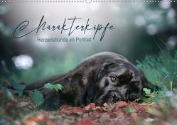 Charakterköpfe – Herzenshunde im Portrait (Wandkalender 2020 DIN A2 quer) von Katharina Siebel - Sensiebelfotografie,  Saskia