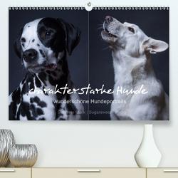 charakterstarke Hunde, wunderschöne Hundeportraits (Premium, hochwertiger DIN A2 Wandkalender 2020, Kunstdruck in Hochglanz) von Stark Sugarsweet - Photo,  Susanne