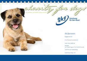 Charity for Dogs – der Kalender zum Wohle unserer Hunde (Tischkalender 2020 DIN A5 quer) von Hundeimpressionen