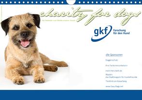 Charity for Dogs – der Kalender zum Wohle unserer Hunde (Wandkalender 2020 DIN A4 quer) von Hundeimpressionen