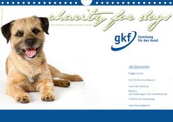Charity for Dogs – der Kalender zum Wohle unserer Hunde (Wandkalender 2021 DIN A4 quer) von Hundeimpressionen