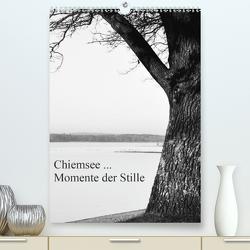 Chiemsee … Momente der Stille (Premium, hochwertiger DIN A2 Wandkalender 2021, Kunstdruck in Hochglanz) von Wasinger,  Renate