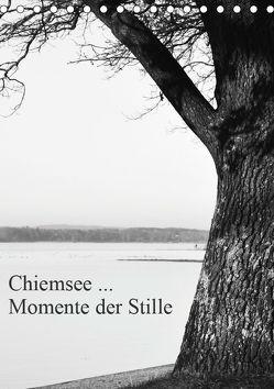 Chiemsee … Momente der Stille (Tischkalender 2019 DIN A5 hoch) von Wasinger,  Renate
