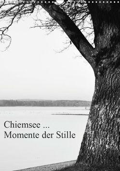 Chiemsee … Momente der Stille (Wandkalender 2019 DIN A3 hoch) von Wasinger,  Renate