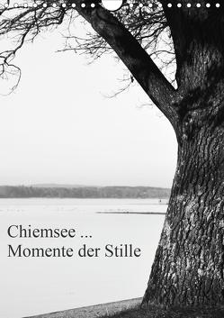 Chiemsee … Momente der Stille (Wandkalender 2021 DIN A4 hoch) von Wasinger,  Renate