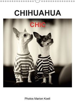 CHIHUAHUA CHIC Photos Marion Koell (Wandkalender 2019 DIN A3 hoch) von KOELL,  MARION