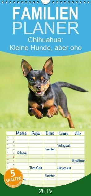 Chihuahua: Kleine Hunde, aber oho – Familienplaner hoch (Wandkalender 2019 , 21 cm x 45 cm, hoch) von CALVENDO
