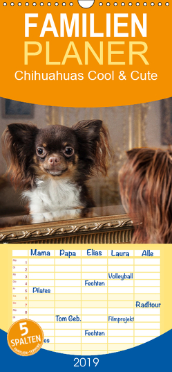 Chihuahuas – Cool and Cute – Familienplaner hoch (Wandkalender 2019 , 21 cm x 45 cm, hoch) von Pinkoss Photostorys,  Oliver