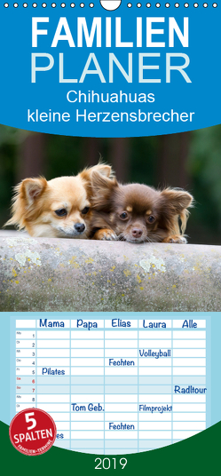 Chihuahuas – kleine Herzensbrecher – Familienplaner hoch (Wandkalender 2019 , 21 cm x 45 cm, hoch) von Scholze,  Verena