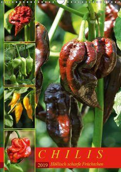 Chilis – Höllisch scharfe Früchtchen (Wandkalender 2019 DIN A3 hoch) von Cross,  Martina