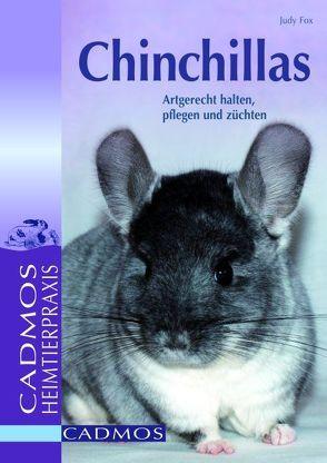 Chinchillas von Fox,  Judy