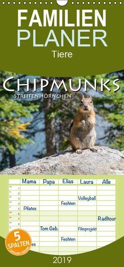 Chipmunks Streifenhörnchen – Familienplaner hoch (Wandkalender 2019 , 21 cm x 45 cm, hoch) von Styppa,  Robert