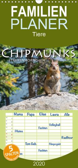 Chipmunks Streifenhörnchen – Familienplaner hoch (Wandkalender 2020 , 21 cm x 45 cm, hoch) von Styppa,  Robert