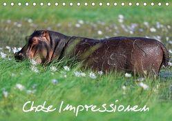 Chobe Impressionen (Tischkalender 2018 DIN A5 quer) von Wolf,  Gerald