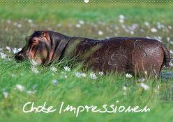 Chobe Impressionen (Wandkalender 2018 DIN A2 quer) von Wolf,  Gerald