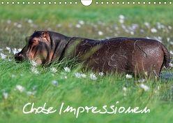 Chobe Impressionen (Wandkalender 2018 DIN A4 quer) von Wolf,  Gerald
