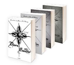 Chroniken von Chaos und Ordnung Band 1-4: Thorn Gandir / Telos Malakin / Bargh Barrowson / Lucretia L´Incarto. Der komplette erste Zyklus in einem Bundle (High Fantasy) von Praßl,  J.H.