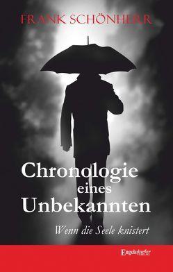 Chronologie eines Unbekannten von Schönherr,  Frank