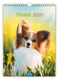 "Classickalender ""Hunde"" 2021"