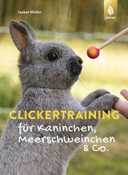 Clickertraining für Kaninchen, Meerschweinchen & Co. von Müller,  Isabel