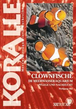 Clownfische von Mai,  Wolfgang