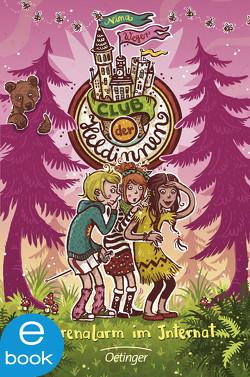 Club der Heldinnen. Bärenalarm im Internat von Dulleck,  Nina, Weger,  Nina