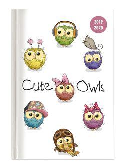 Collegetimer Cute Owls 2019/2020 – Eule – Schülerkalender A5 (15 x 21) – Day By Day – 352 Seiten – Terminplaner – Notizbuch von ALPHA EDITION
