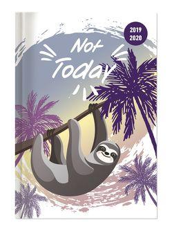 Collegetimer Not Today 2019/2020 – Faultier – Schülerkalender A5 (15 x 21) – Day By Day – 352 Seiten – Terminplaner – Notizbuch von ALPHA EDITION