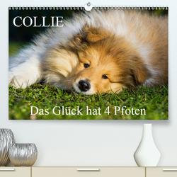 Collie – Das Glück hat 4 Pfoten (Premium, hochwertiger DIN A2 Wandkalender 2020, Kunstdruck in Hochglanz) von Starick,  Sigrid