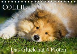 Collie – Das Glück hat 4 Pfoten (Tischkalender 2019 DIN A5 quer) von Starick,  Sigrid