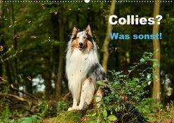 Collies? Was sonst! (Wandkalender 2019 DIN A2 quer) von Janetzek,  Yvonne