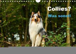 Collies? Was sonst! (Wandkalender 2019 DIN A4 quer) von Janetzek,  Yvonne