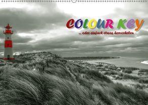 Colour Key …oder einfach etwas hervorgehoben (Wandkalender 2018 DIN A2 quer) von N.,  N.